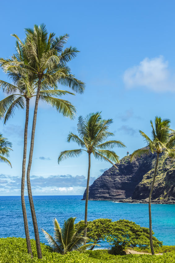 5 Day, 4 Night Hawaii Getaway